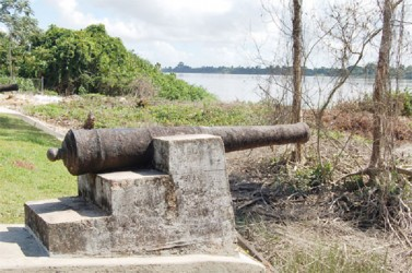 Cannon overlooking the Essequibo River
