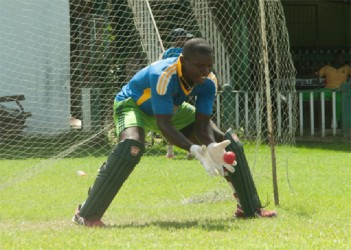 National wicket-keeper Anthony Bramble works hard on his catching during the team's training session