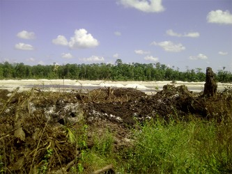 A section of the farmlands which had been flattened to facilitate the airport expansion project.