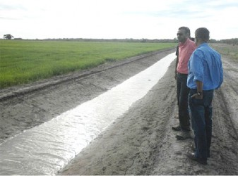Minister of Natural Resources and the Environment, Robert Persaud (second from right) looking at a drainage canal on the Santa Fe farm (GINA photo)