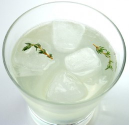 Thyme Lime Vodka Cocktail (Photo by Cynthia Nelson)