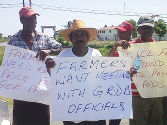 Head of the Essequibo Paddy Farmers Association Naith Ram (second, left) and other rice farmers protesting at Anna Regina High Bridge yesterday
