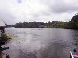 View of the Pomeroon River from the Kabakaburi Mission