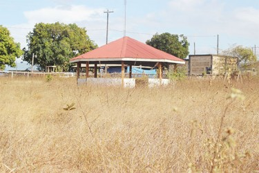 Weeds take over the children's playpark in Lethem