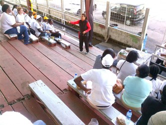 Speaking with a group of Guyanese businesswomen in the National Park recently