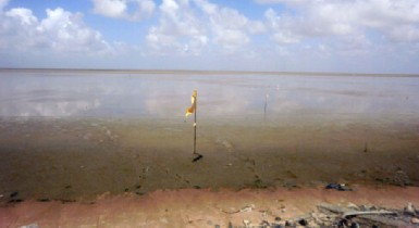 A view of the Essequibo River from La Belle Alliance