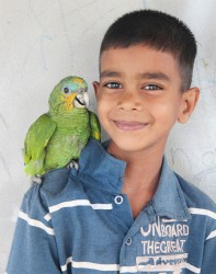 Little Joshua and his pet parrot