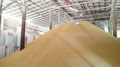 Paddy awaiting the milling process at Ramlakhan and Sons Rice Mill at Exmouth, Essequibo Coast.