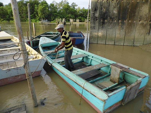 Gone to fishing?  Fish gone – Stabroek News