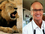 Cecil the lion and Walter Palmer