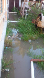 A section of a yard in River View that was flooded.