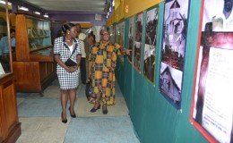 Dr. Nicolette Henry viewing some of the posters displayed at the exhibition