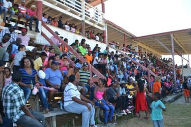 West Coast Berbice residents at Sunday's livestock exhibition
