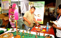Balata figures at Business Exposition