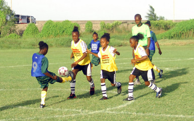 Semi-final action between St Stephen's and South Ruimveldt at the Ministry of Education ground in the 2nd Smalta/Ministry of Public Health Girls U-11 Football Championship