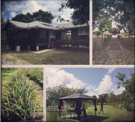 Composite photo of the Gobins' farm at Parika
