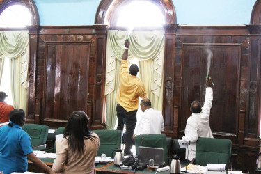 Spraying the insects which invaded Parliament Chambers yesterday.