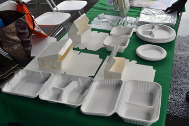 Some of the alternative products that the EPA recommends as alternatives to the use of Styrofoam (GINA photo)