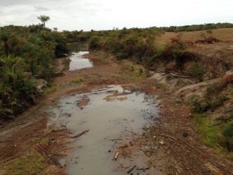 What was once a flowing body of water under the Pirara Bridge has been reduced to puddles