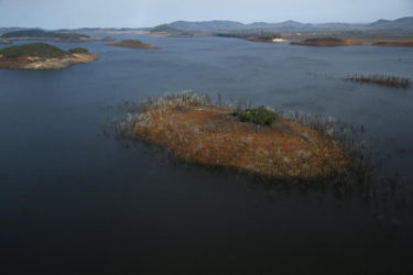Trees and water marks are seen on previously submerged land at Guri dam in Bolivar state, Venezuela April 12, 2016. REUTERS/Carlos Garcia Rawlins