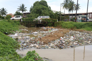 This trench at Good Hope, East Coast Demerara was swollen with water from the heavy rainfall but also clogged with garbage. One resident said that people from surrounding communities habitually dumped their rubbish in the waterway. (Photo by Keno George)