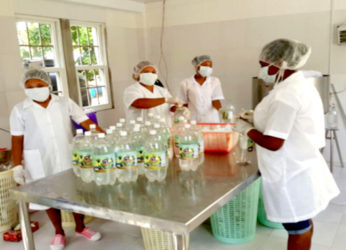 Bottling coconut water at Henville Farm
