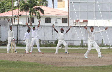 Off-spinner Gajanan Suknanan who destroyed East Coast with his seven wickets, wins an appeal yesterday at Bourda.
