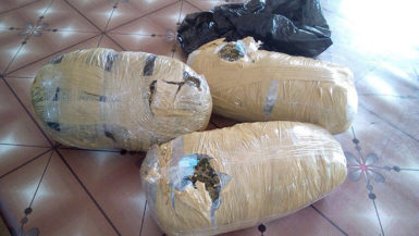 The wrapped parcels of marijuana