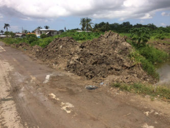 The mud pile at the side of the road near the Gafoors Nismes Shopping Complex