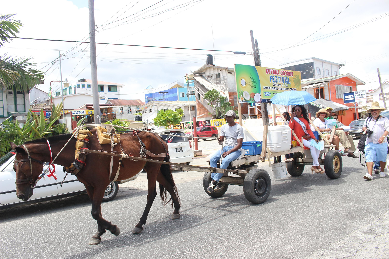 Guyana Coconut Festiva...