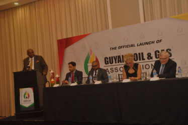 Oil and Gas Association Director Nigel Hughes addressing the forum.