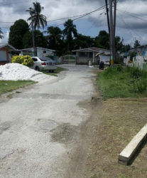 The section of Avocado Avenue, West Ruimveldt where Rodney was shot
