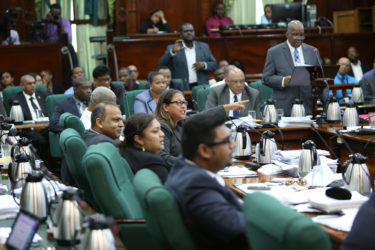 Former Amerindian Affairs Minister Pauline Sukhai in heckle mode (Photo by Keno George)
