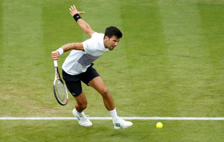 Djokovic into semi-finals at Eastbourne, Kerber out