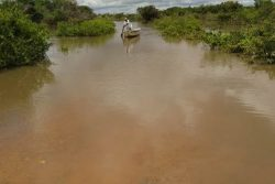The flooded area in deep South Rupununi yesterday. (DPI photo)
