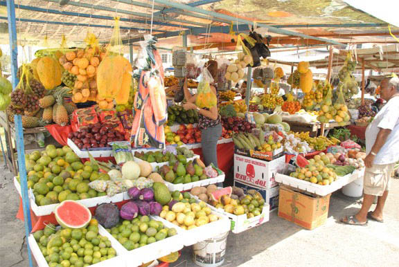 Global Tropical Fruit Market A Compelling Reason To Keep