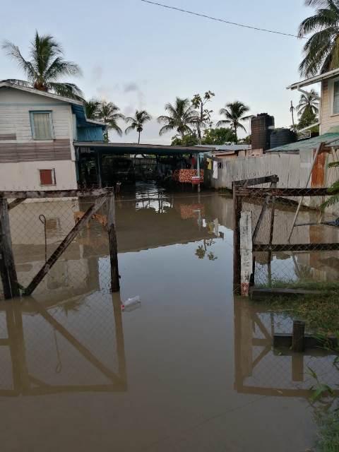 A deeply flooded yard [DPI photo)