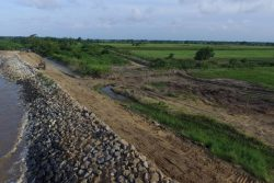 The sea defence project at Cane Garden, Leguan (DPI photo)