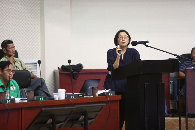 United Nations Resident Coordinator and United Nations Development Programme [UNDP) Resident Representative, Mikiko Tanaka. (DPI photo)
