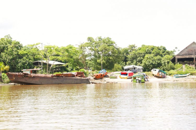 A view of Byderabo from the Essequibo River
