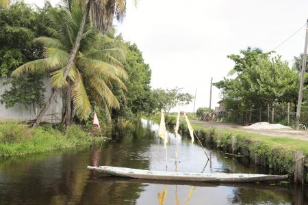 The cleared blackwater canal that separates Cane Grove Estate from Coconut Dam, Cane Grove
