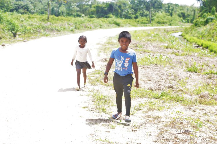 A brother and sister from the neighbouring Bendorff community make their way along the road in Larimakabra to the shop situated more than a mile away from their home