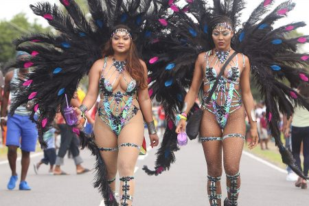 Critics have decried the revealing costumes (Guyana Carnival 2018; Stabroek News file photo)