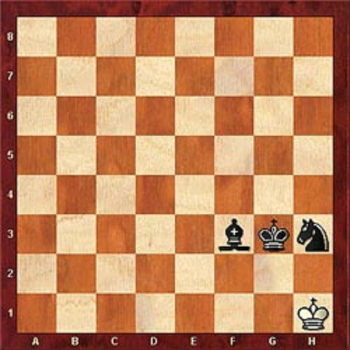 White has been checkmated! Black's Bishop calls the check. White cannot get out. Two Kings cannot stand next to each other and black's Knight controls the g8 square, which White cannot cross.