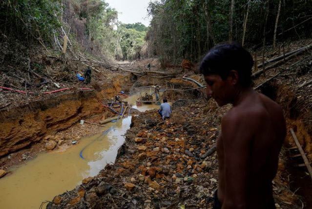 BRASILIA, (Reuters) – A federal court ordered the Brazilian government yesterday to expel an estimated 20,000 illegal gold miners from the Yanomam