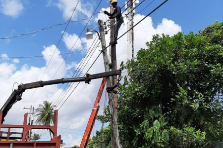 A member of a Guyana Power and Light Inc (GPL) technical team during work to replace a pole at Met-en-meerzorg, West Coast Demerara yesterday. The technical team transferred all the necessary line hardware to the new pole and reenergised the circuit. (GPL photo)