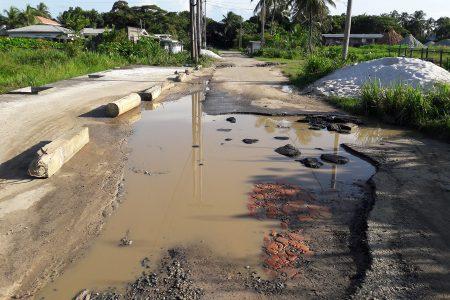 A road in Lamaha Park (Orlando Charles photo)